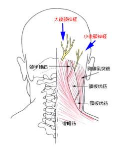 後頭 神経痛 症状